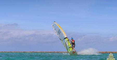 freerace windsurf in Tasmania